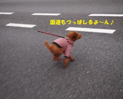 061_convert_20121123100621.jpg