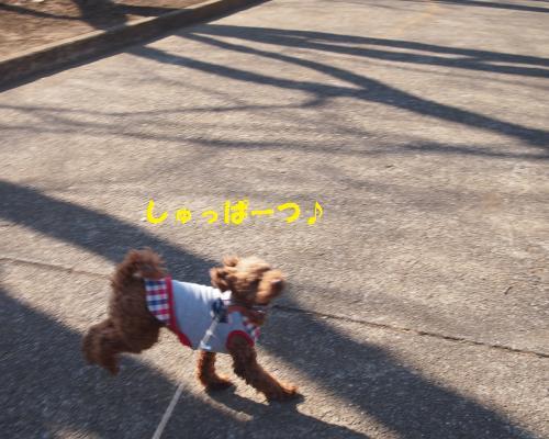 068_convert_20130302022624.jpg