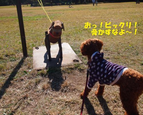 072_convert_20121106213459.jpg