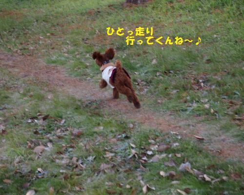 074_convert_20130120235521.jpg