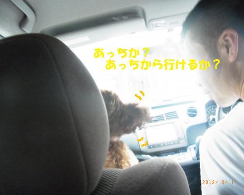 078_convert_20120902025308.jpg