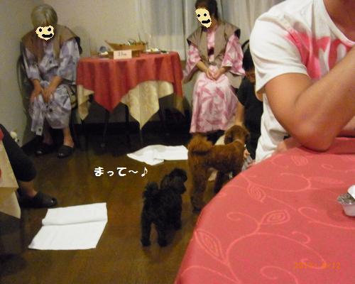 088_convert_20120815072454.jpg