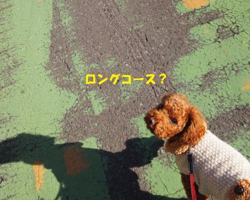 092_convert_20130120235815.jpg
