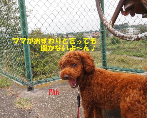 096_convert_20121018205020.jpg