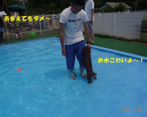 101_convert_20120730215624.jpg