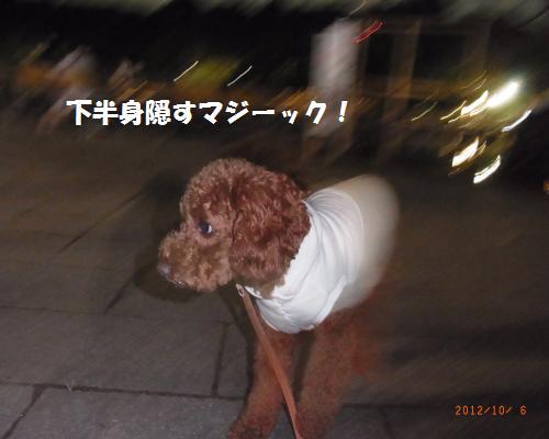 104_convert_20121006223207.jpg