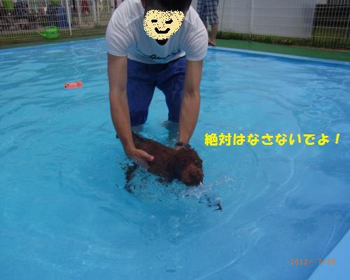 105_convert_20120730215713.jpg