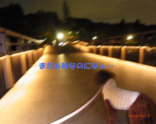 106_convert_20121006223305.jpg