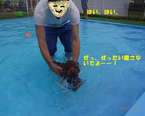 107_convert_20120730220008.jpg
