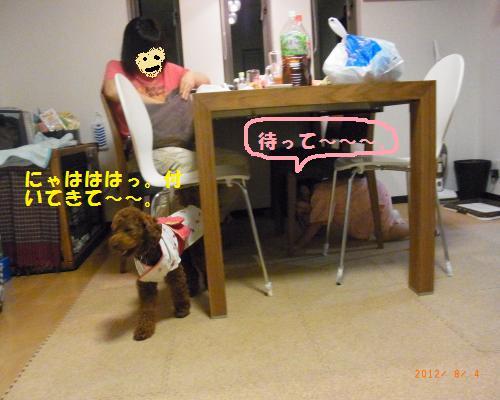 108_convert_20120805084249.jpg