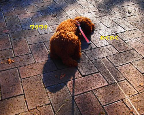 111_convert_20121130005842.jpg