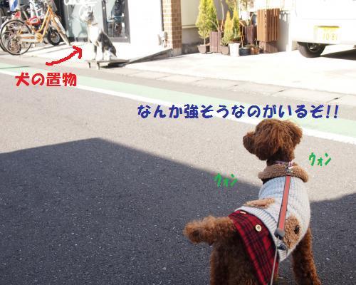 112_convert_20130121000101.jpg