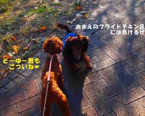 114_convert_20121130010058.jpg