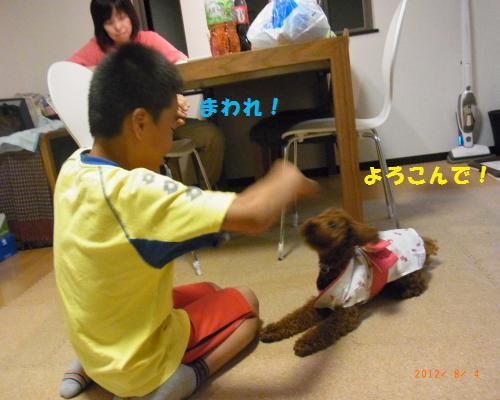 115_convert_20120805084506.jpg