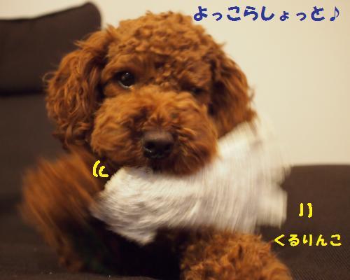 120_convert_20121014222807.jpg