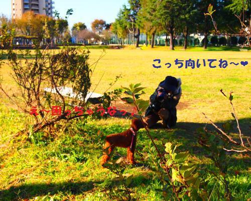 127_convert_20121118100039.jpg