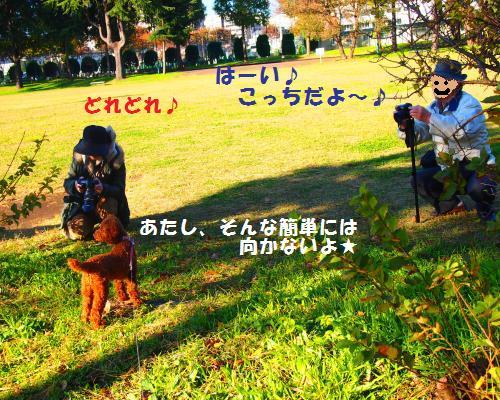 128_convert_20121118101049.jpg