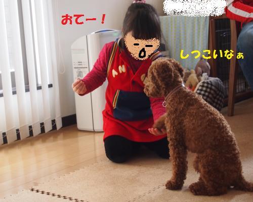 137_convert_20130307004417.jpg