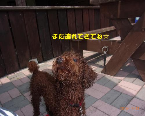 143_convert_20120730221450.jpg