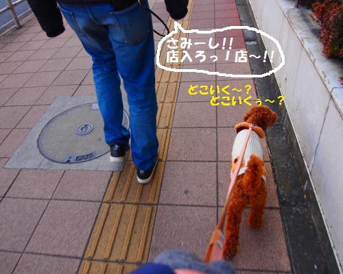 180_convert_20130212231625.jpg