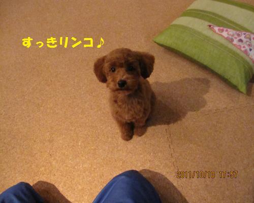 182_convert_20120913204718.jpg