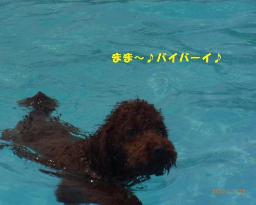 183_convert_20120730220724.jpg