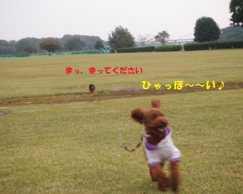 193_convert_20121028090754.jpg