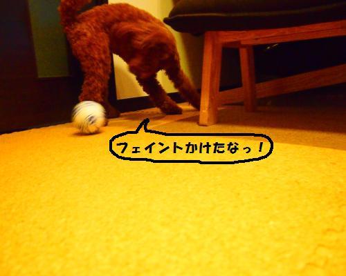 208_convert_20130217203652.jpg