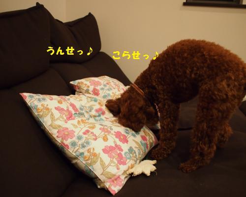 212_convert_20121110130247.jpg