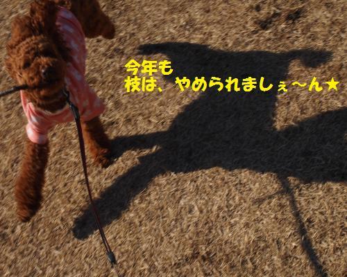 213_convert_20130112224319.jpg