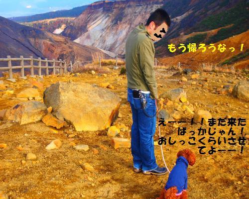 222_convert_20121021192328.jpg
