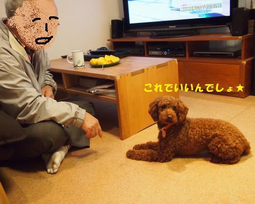 312_convert_20121110124106.jpg