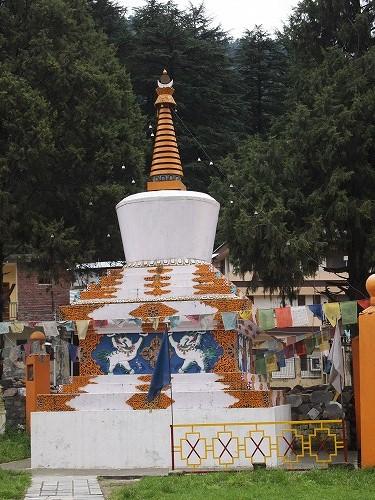 manali tibet (3)