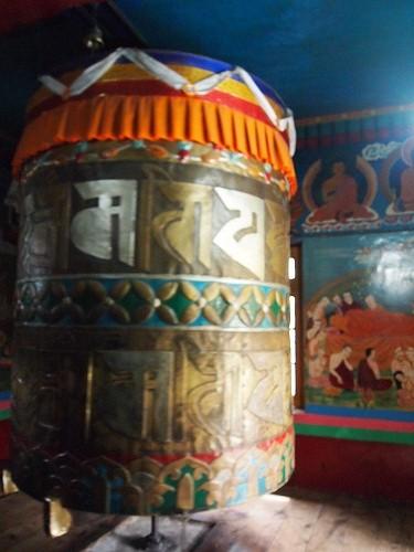 manali tibet (6)