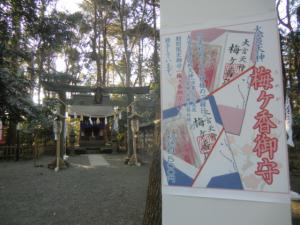 CIMG0013 201303大宮八幡宮