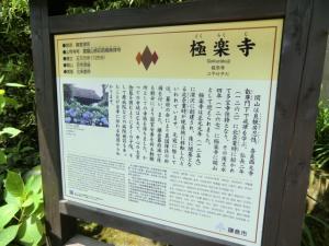 CIMG1945 201306極楽寺