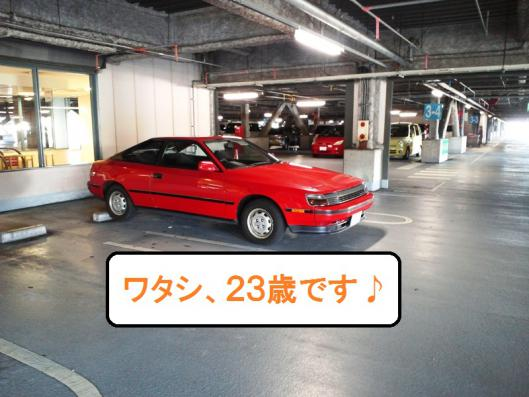 CA3J0053_20121024144516.jpg