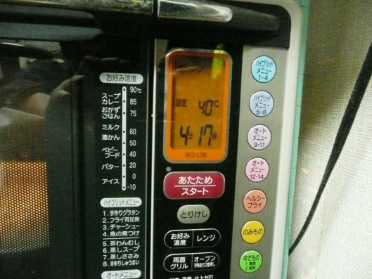 P1140152.jpg