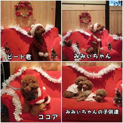 クリスマス衣装を着て2