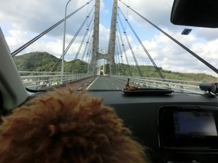 橋をみるココア