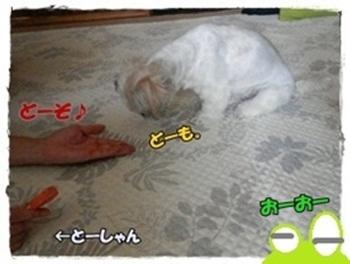 vsおやつ4
