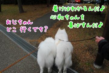 2013122811590.jpg