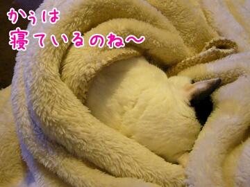 2013127185916.jpg