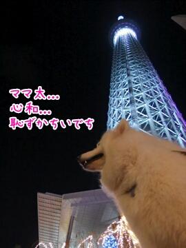20141593415.jpg