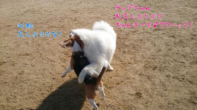 edit_2014-01-23_12-50-04-085.jpg
