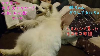 edit_2014-01-25_22-37-17-006.jpg