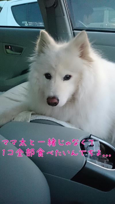 edit_2014-02-03_17-56-09-714.jpg