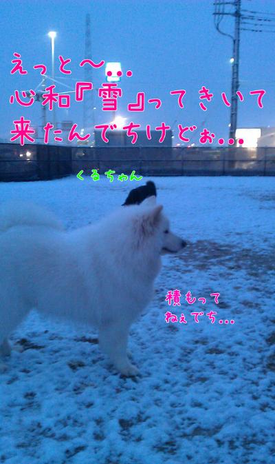 edit_2014-02-05_09-04-10-677.jpg