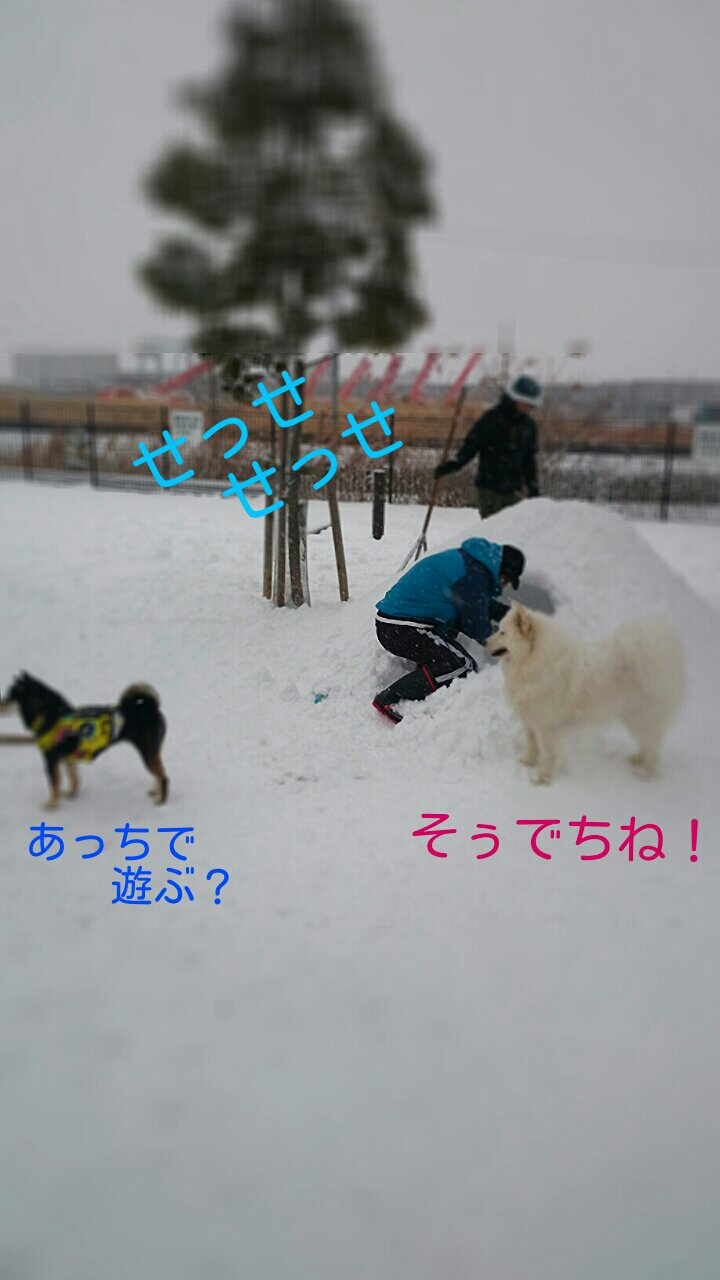 fc2_2014-02-09_10-27-22-711.jpg