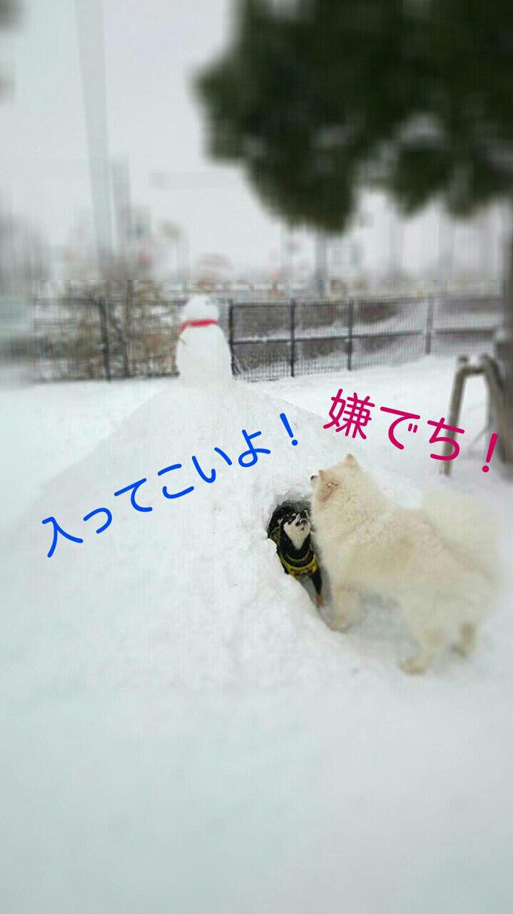 fc2_2014-02-09_10-31-13-763.jpg